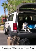 Ranger the Dog Traveler